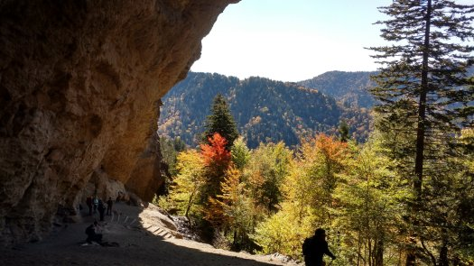 View from Alum Cave on Mount La Conte 10-22-2019