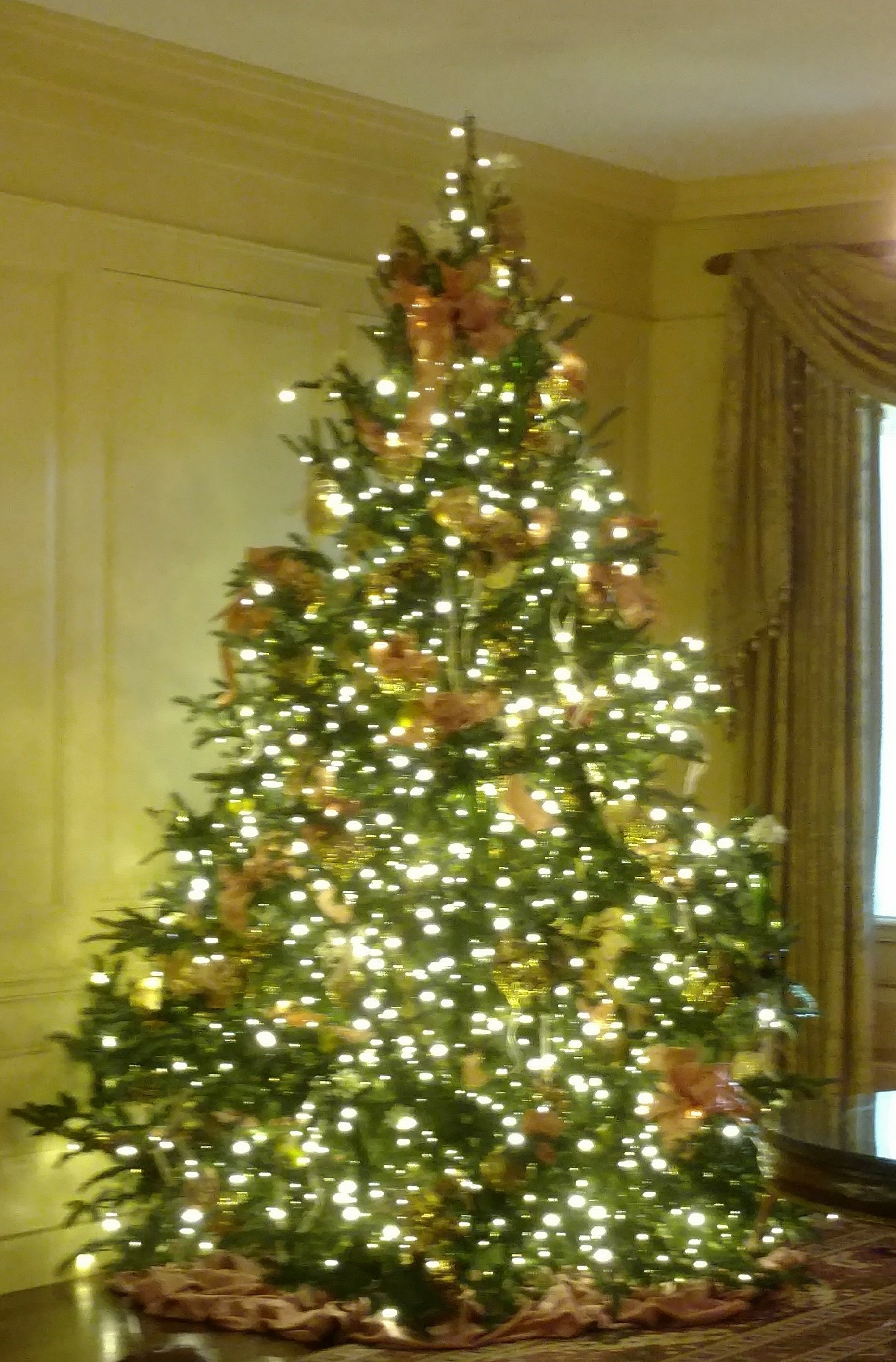 A Christmas Tree in the Yellow Room White House